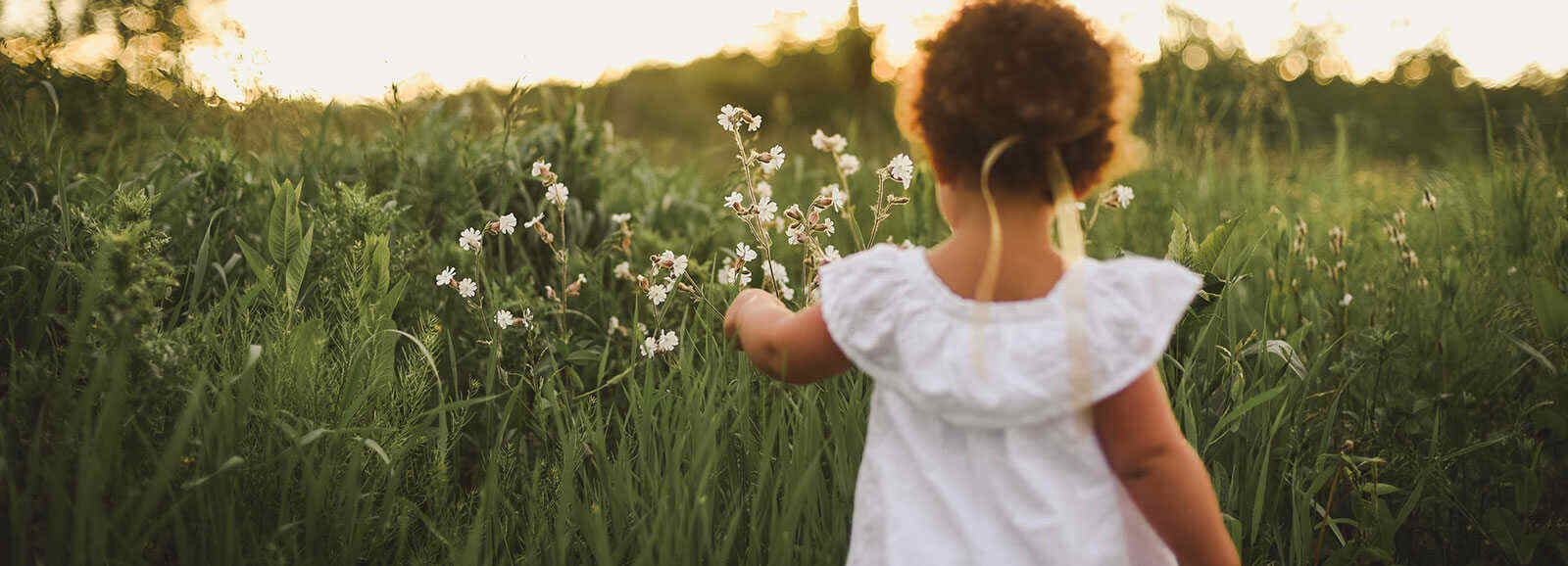 little girl in a white dress looking at field flowers